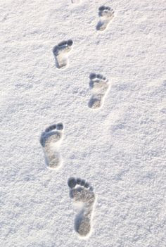 ... snow angels. Anonymous .....and more quotes for a snowy day! #snow #