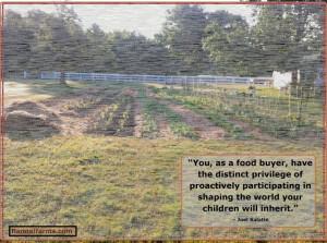 Joel Salatin quoteSalatin Quotes