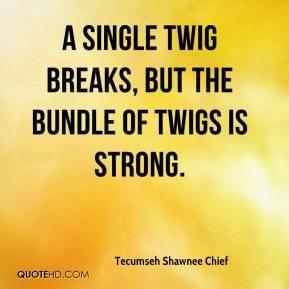 Tecumseh Shawnee Chief - A single twig breaks, but the bundle of twigs ...