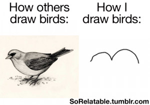 bird, birds, cool, draw, drawing, funny, funny daily, lol, meme, quote ...