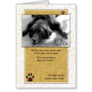 Sick Terminally Ill Dog Pet