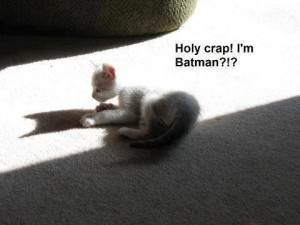 If you enjoyed this, check out our Funny Cat Joke Pics