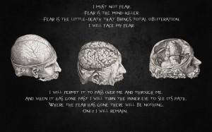 Quotes Brain 1920×1200 Wallpaper 875197