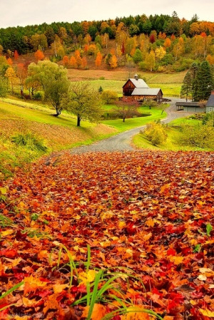 Autumn countryside