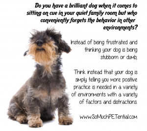 Dog Lovers Quotes Dog training quote
