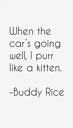 Buddy Rice Quotes amp Sayings