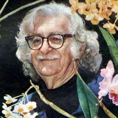 Roberto Burle Marx Quotes
