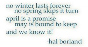 spring will come! #quote #winter #spring