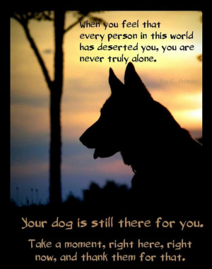 Dog Loyalty Quotes