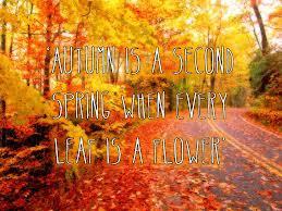 Autumn Quotes Graphics