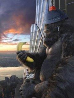 King Kong Funny Audi Mercial
