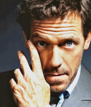 ... , na minha opinião Hugh Laurie tem futuro na carreira de escritor