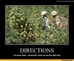 ... think we are fine right here.,funny pictures,stoner-humor,auto