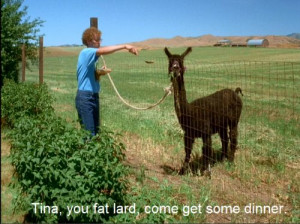 napoleon dynamite quotes tina the llama