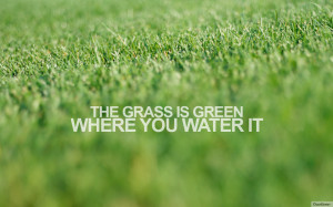 quotivee_1280x800_the grass is green where you water it