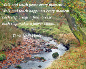 Walk and touch peace every moment.