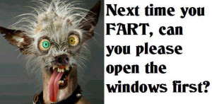 Next time you fart, open the windows