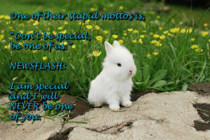 Bunny Quotes Charlie Sheen