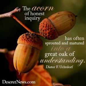 An acorn of honest inquiry...