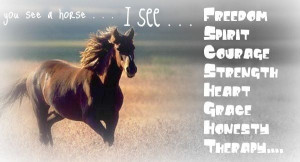 See a horse. I see - freedom, spirit, courage, strength, heart, grace ...