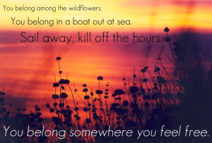 Love this song...love wildflowers...love Tom Petty...win-win-win