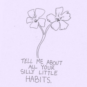 life quotes silly little habits Life Quotes Silly Little Habits