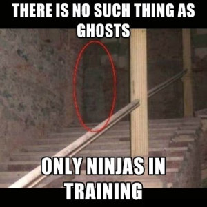 No Such Thing As Ghosts - Only Ninjas In Training ~ Motivational funny ...