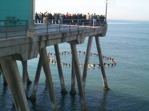 Close friends and family hold a paddle-out ceremony for a surfer who ...