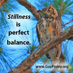 Stillness is the perfect balance. guyfinley.org