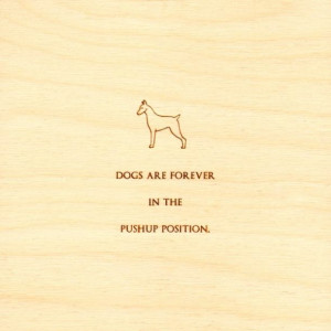 funny-quotes-on-wood-dogs