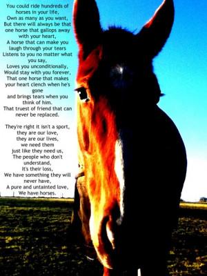 Thread: My horse my best friend best quotes