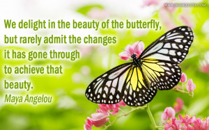 delight in the beauty of the butterfly, but rarely admit the changes ...