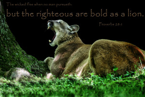 ... lion. Solomon Bible scripture verse pictures free christian wallpaper