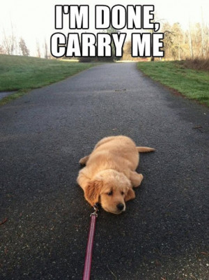 done, carry me