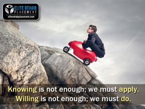 Knowing is not enough; we must apply. Willing is not enough; we must ...