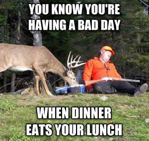 You Know You're Having a Bad Day When Dinner Eats Your Lunch