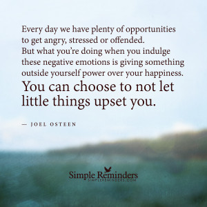 ... things upset you by Joel Osteen with article by David Matthew Brown