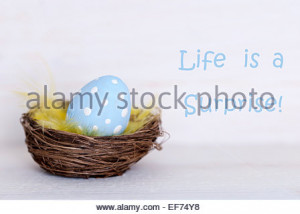 Stock Photo - One Blue Dotted Easter Eggs In Easter Basket Or Nest On ...