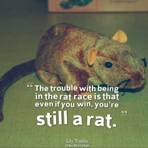 Quotes Picture: the trouble with being in the rat race is that even if ...