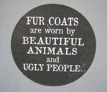 animal-animal-cruelty-fur-idiots-wear-fur-no-fur-no-to-fur-51341.jpg
