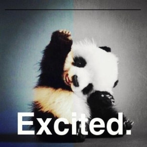 Hands up if your excited that Summer is here! | Quotes We Love