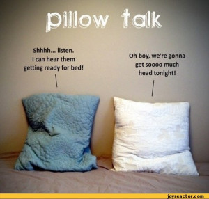 ... hear them getting ready for bed!i,funny pictures,auto,pillow,talking