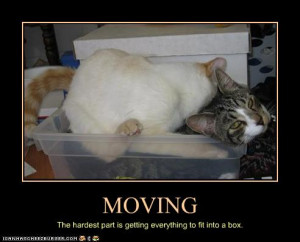 Moving Day. Again!