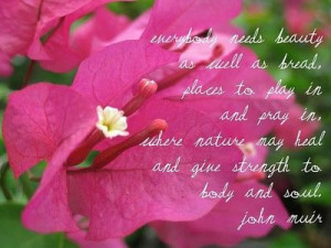 ... nature may heal and give strength to body and soul.