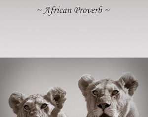 ... African Photography, Wall Art, Animal quote, Lion Cubs, Safari Animals