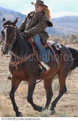 Related Pictures horses screensaver horse images photos 63719