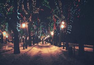 christmas, light, night, winter, wood