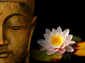 Lotus Flower Zen Wallpaper