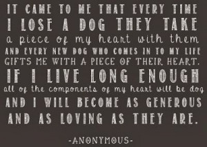 ... dog can teach humans to be as generous and loving and a dog what a