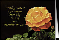 Sorry, for the Loss of Your Mother-in-Law, yellow orange rose card ...